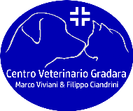 logo ambulatorio viviani